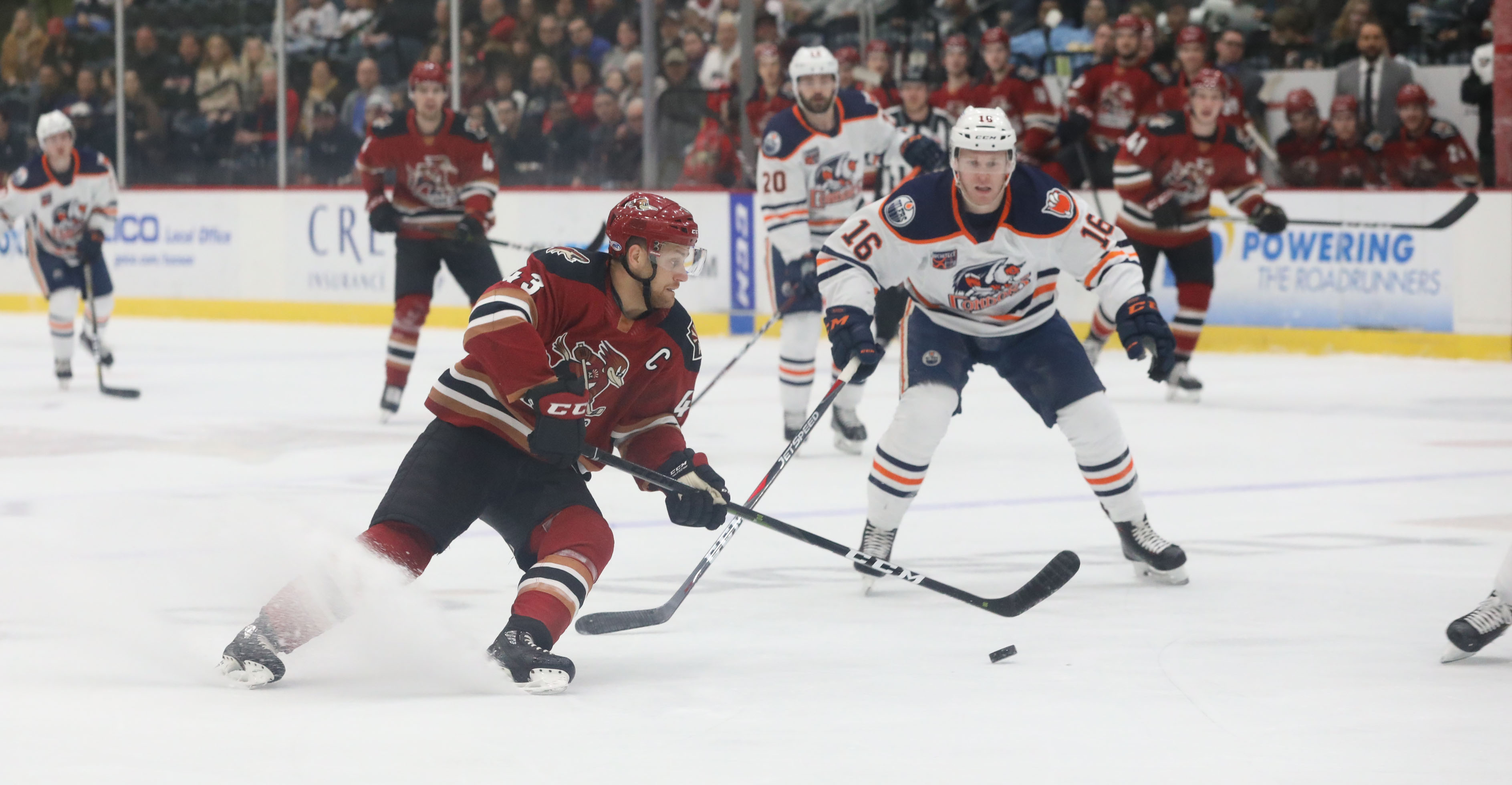 Condors Win 16th Straight Pro Hockey News