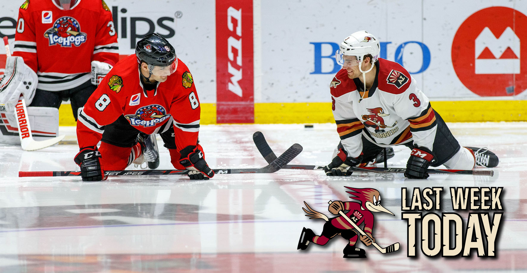 4231305a952 The Official Website of the Tucson Roadrunners  Hockey News