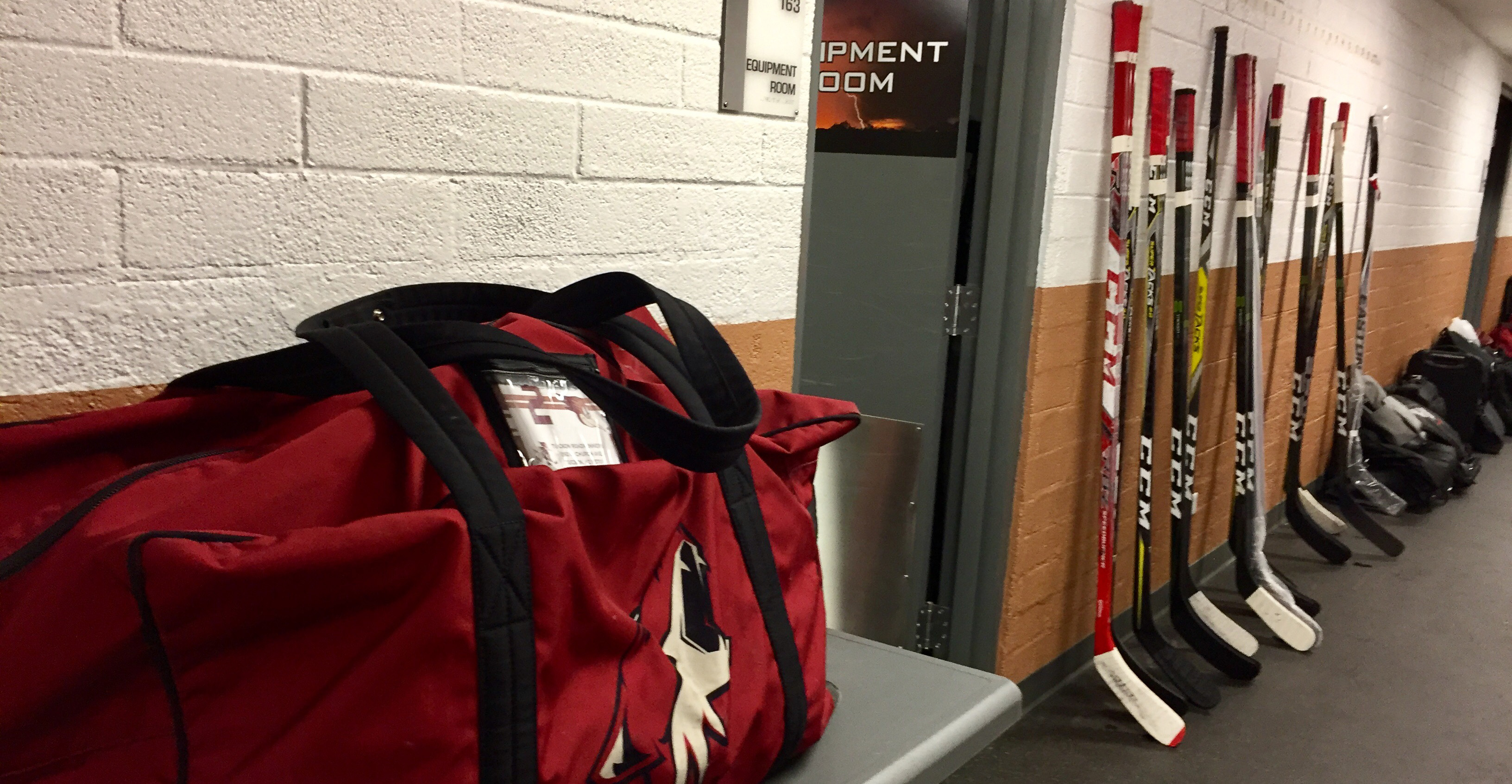 The Roadrunners Are Currently En Route To Southern California Where Theyu0027ll  Be Stationed This Weekend For A Pair Of Preseason Games Against The Ontario  ...